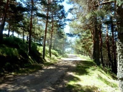 Chorro,Chorrera San Mamés_Valle del Lozoya;fuentona valle de belagua garganta de las nogaledas naci